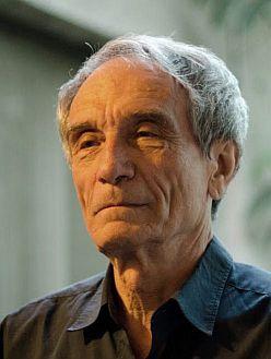 Image of Tótfalusi István